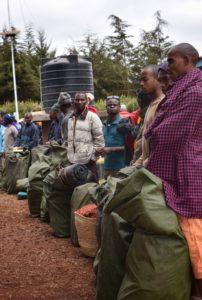 porters kilimanjaro zara tours