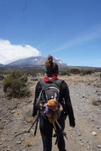 Hiking Kilimanjaro Zara Tours