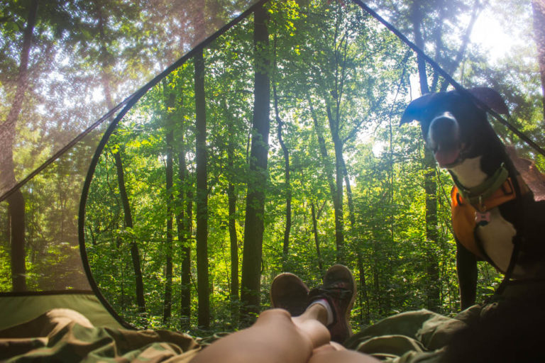 Primitive Camping in Sky Meadows State Park
