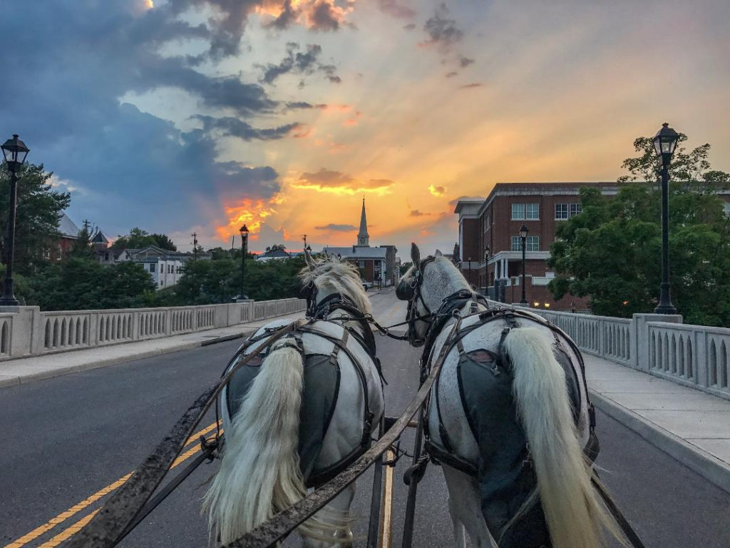 Carriage ride adventures in Lexington Virginia
