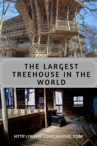 Largest Treehouse in World Pinterest