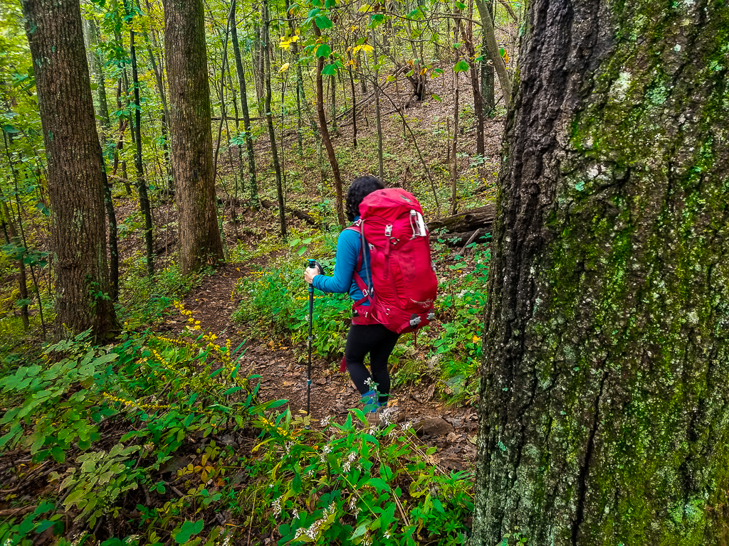 Practical Guide to Backpacking Virginia's Three Ridges Loop